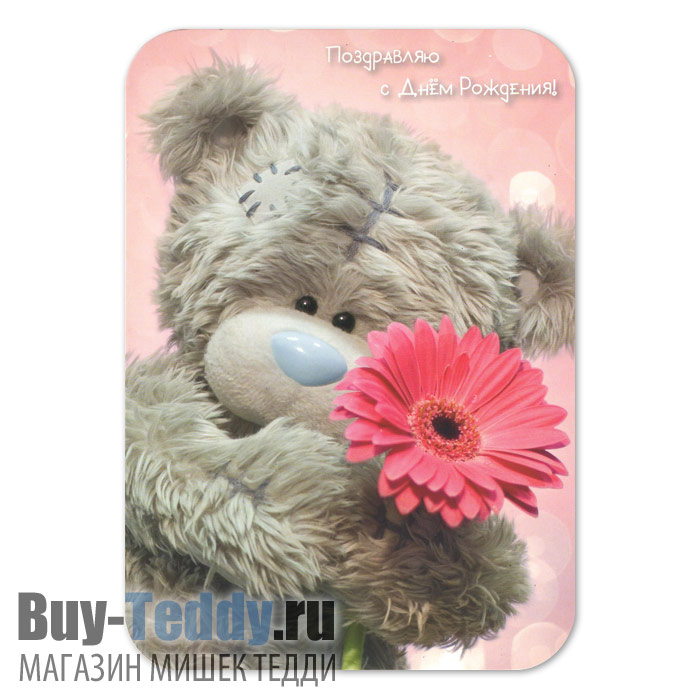 http://www.buy-teddy.ru/pictures/10543-1_1.jpg